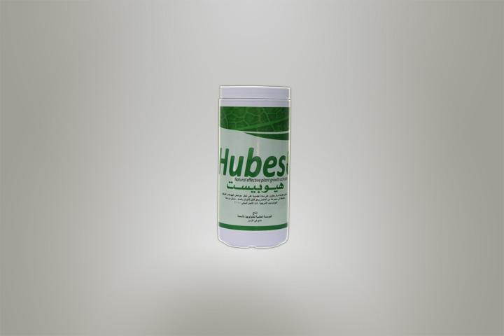 hubest-85-ar