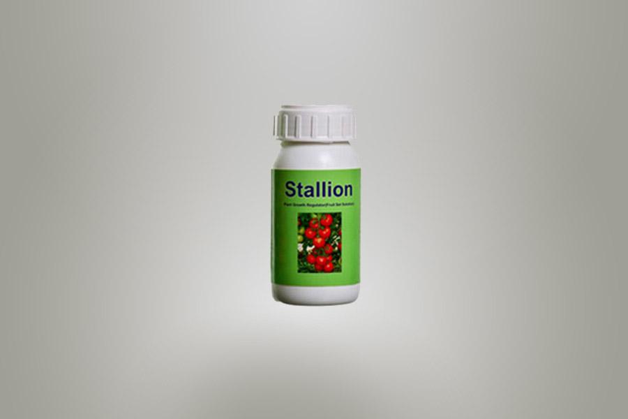 stallion-iftc